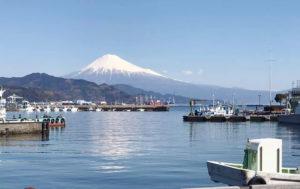 富士山 ヤマクニ水産